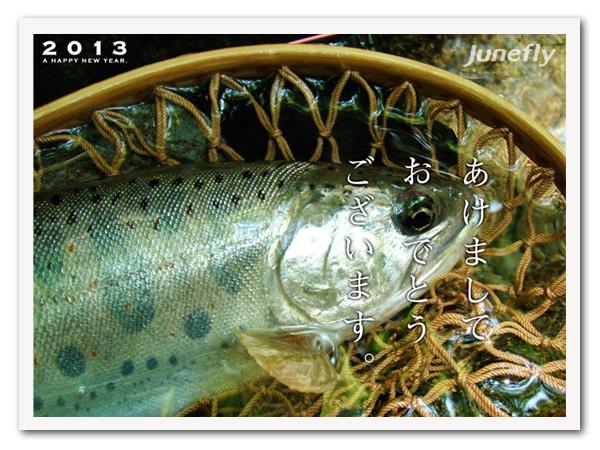 Facefish_B130104.jpg